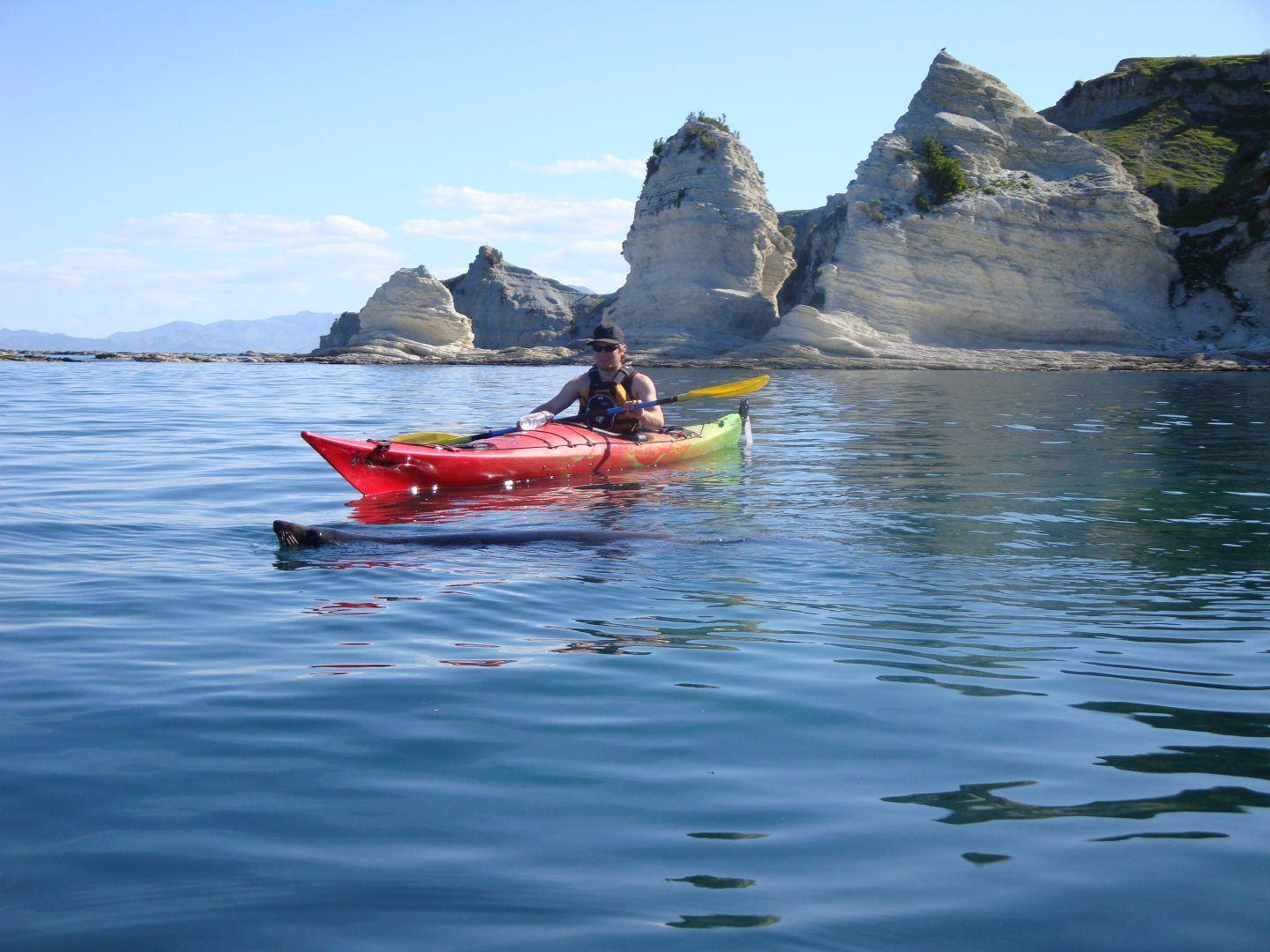 Paddle skills with Kaikoura Kayaks